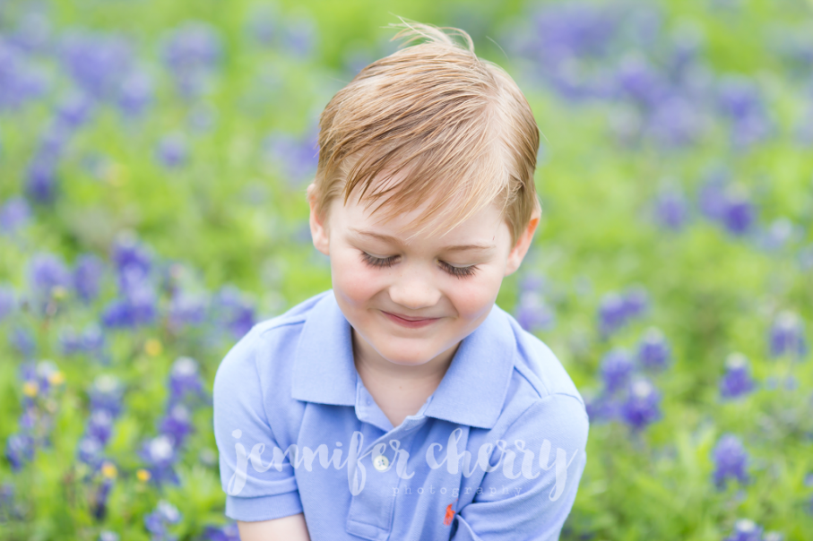 Texas Bluebonnets1